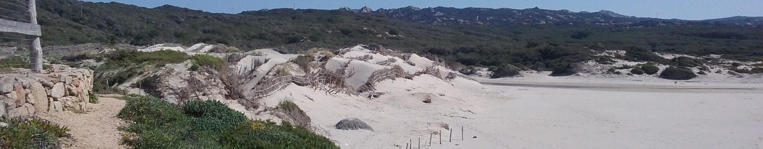 Dune Rena Majore
